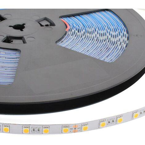 "main image of ""Tira LED Monocolor EPISTAR SMD5050, DC24V, 20 metros (60Led/m), 120W, IP20"""