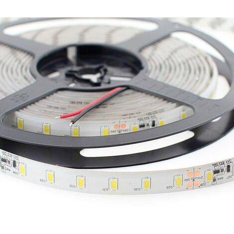 Tira LED Monocolor SMD5630, DC24V CC, 5m (70 Led/m) - Sensor Temperatura - IP20