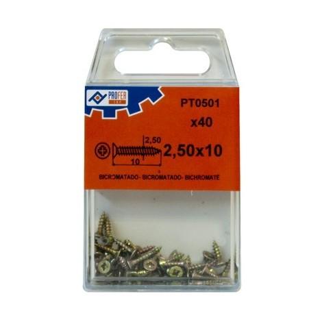 Tirafondo C/plan Pozi Bic C/40 - NEOFERR - 48530-PT0501 - 2,5X10 MM