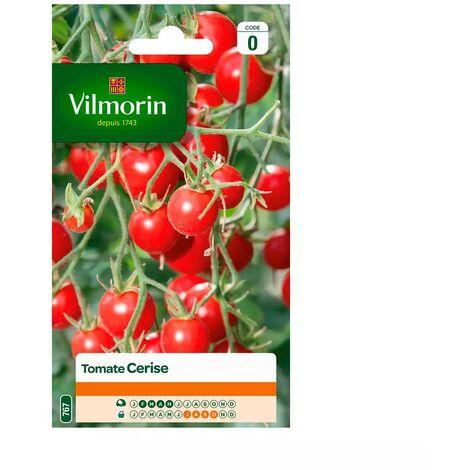 Tomate cerise Vilmorin 0,2gr