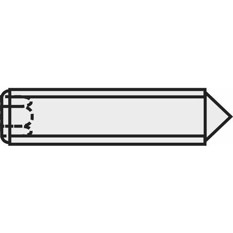 """main image of """"TOOLCRAFT 839849 Vis sans tête M6 5 mm acier 20 pc(s)"""""""