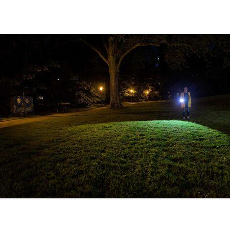 Ledlenser P700 LED (monocolore) Torcia tascabile a batteria 700 lm 80 h 341 g - 500939