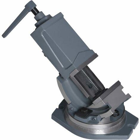 Tornillo de banco basculante de 2 ejes 100 mm