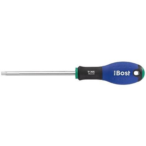 Tournevis BOST - Lame Torx Expert - T10 X 75 mm - 624690