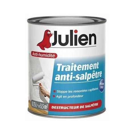 Traitement anti-salpêtre boîte 750 ml