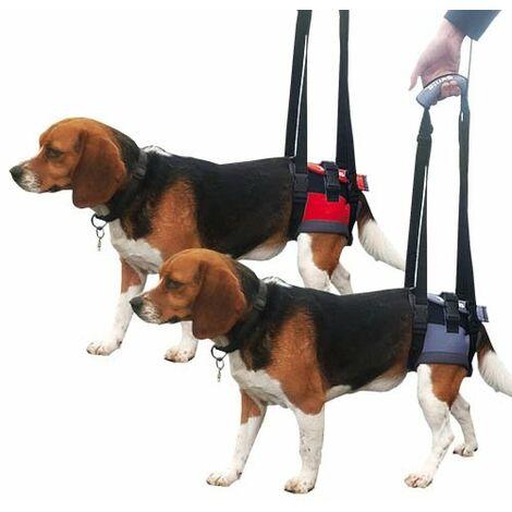 Transportador - Arnés de mano para perros con parálisis en patas delanteras o traseras HANDY CANIS disponible en varias tallas