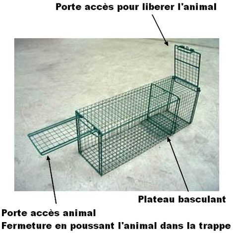 Trappe de capture avec porte basculante + porte accès Désignation : Trappe capture MORIN 100237