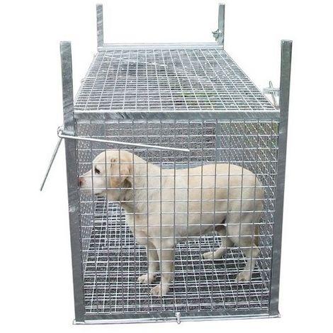Trappe de capture pour chien ou animaux errant Désignation : Trappe capture MORIN 100238