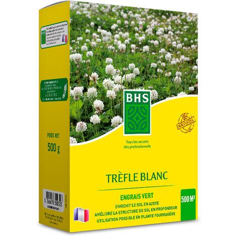 """main image of """"TRÈFLE BLANC - La boîte de 500 g pour 500 m2 - Semences Fourragères Légumineuses"""""""