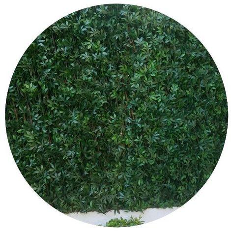 Treillis en bois de saule et feuilles de vigne vierge artificielles - Vert