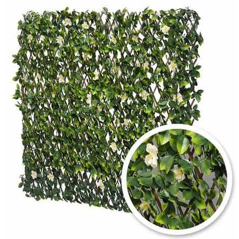 "main image of ""Treillis extensible feuilles de jasmin fleuri"""