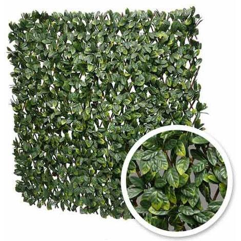 Treillis extensible feuilles de laurier amande