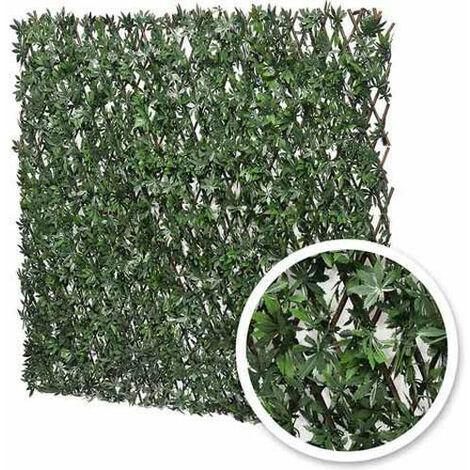 Treillis feuilles de vigne vierge
