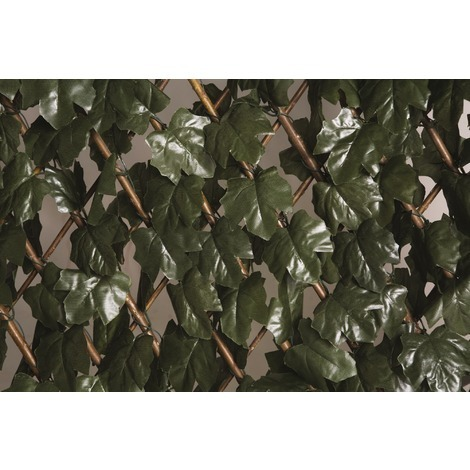 Treillis osier extensible à feuilles Catral