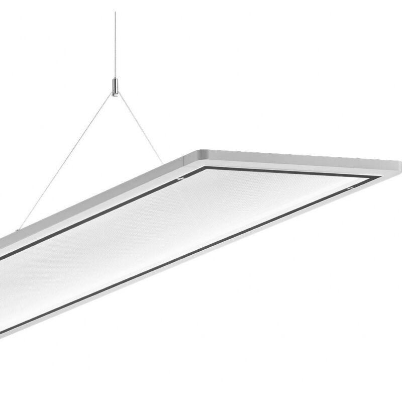 Trilux LED-Hängeleuchte LateraloP H2#6365251