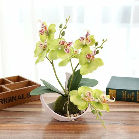 TRIOMPHE Bricolage simulation fleur bonsaï phalaenopsis (y compris pot) ornements créatifs simulation plante en pot simulation fleur, vert