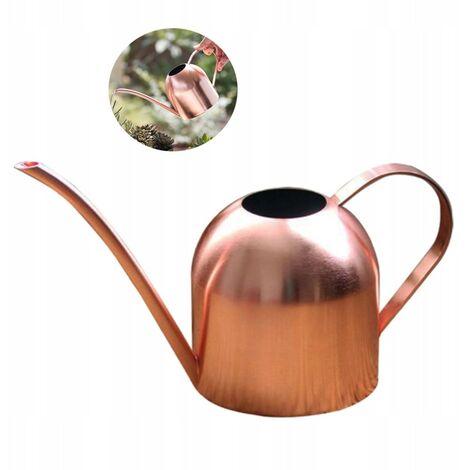 """main image of """"TRIOMPHE L'arrosage en acier inoxydable peut arroser la fleur d'arrosage de jardin peut arroser de jardin de plante plante bouteille d'eau ménage 500 ml(A)"""""""