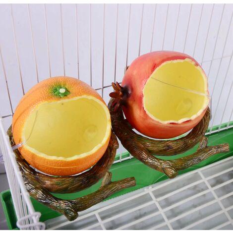 TRIOMPHE Mangeoire à oiseaux Mangeoire à fruits Mangeoire à fruits pour perroquet Boîte de nourriture pour perroquet
