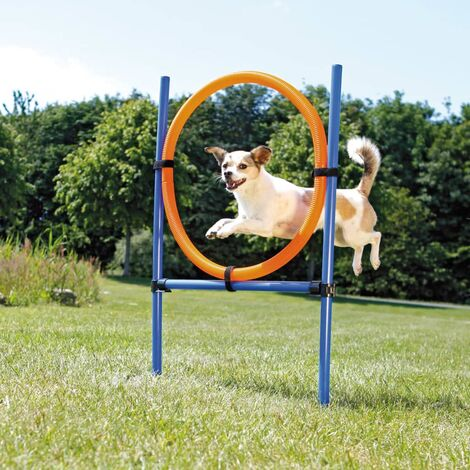 TRIXIE Dog Agility Ring 115x3 cm Plastic 3208