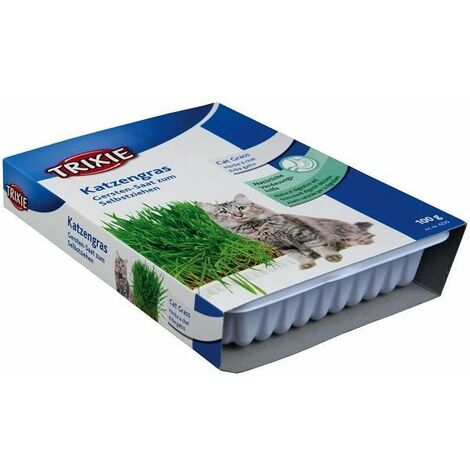 """main image of """"Trixie Grow Your Own Cat Seed 100g - (Bowl)"""""""