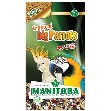 Tropical Big Parrots Manitoba