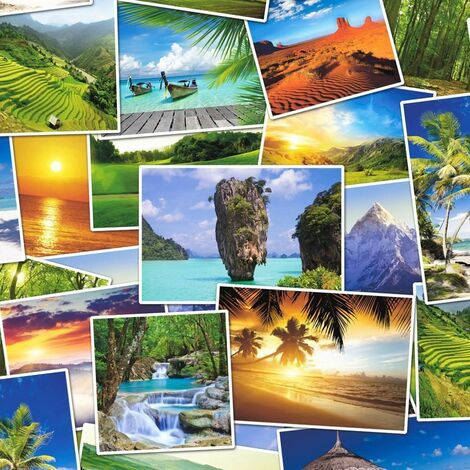 Tropical Photo Collage Wallpaper Palm Trees Beach Water Paste The Wall Vinyl