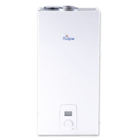 TTulpe C-Meister 14 P37 Eco ErP/low NOx room sealed gas water heater, propane/butane gas 37 mbar