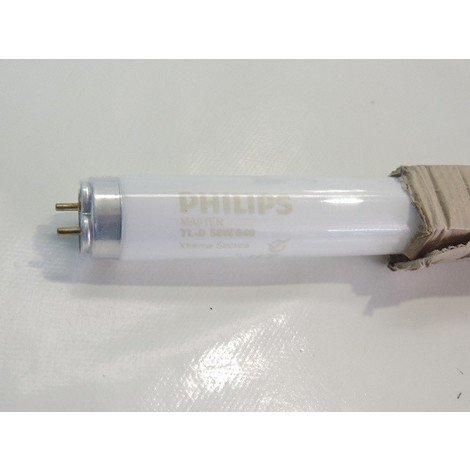 Tube fluo T8 58W blanc froid 4000K protection bris de verre longueur 1500mm MASTER TL-D XTREME SECURA PHILIPS 889874