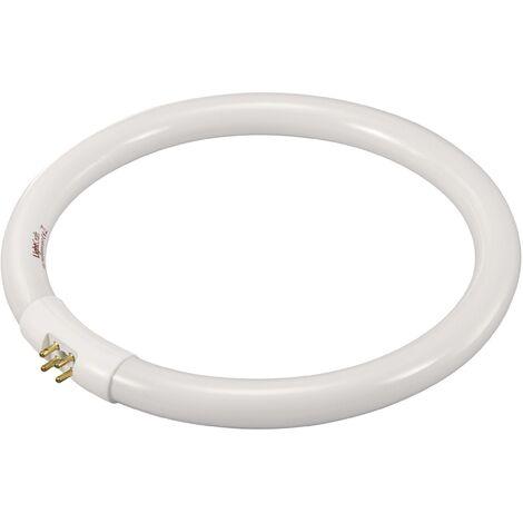 """main image of """"Tube fluorescent G10q 22 W N/A forme d'anneau (Ø x H) 185 mm x 185 mm, classe d'efficacité énergétique : B, 1 pc(s) C59883"""""""