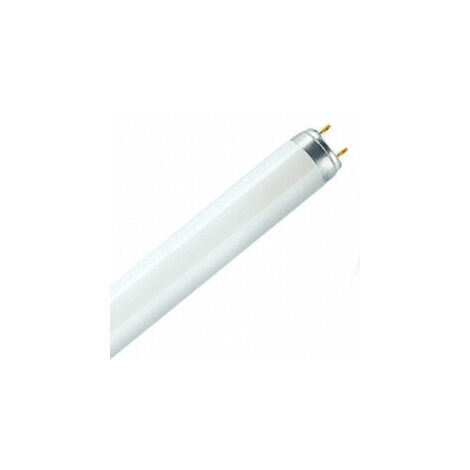 Blanc De 1 Forme Fluorescent Osram s Froid Pc Tube W 36 G13 f7mgIvYb6y