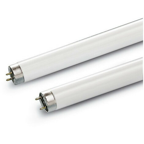 Tube fluorescent T8 G13 - 36 W 1200 mm OU 58 W 1500 mm
