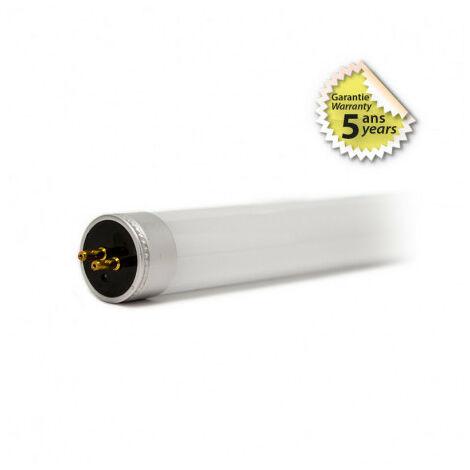 TUBE LED VISION-EL T6 26 W 1500 mm 250V 4000K 3900LM (20)