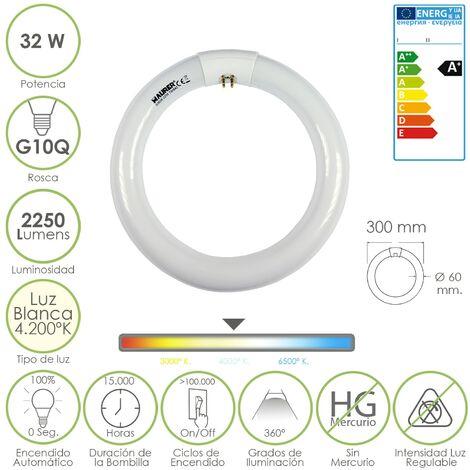 Tubo circular fluorescente trifosforo 32 w. Ø 300 mm. luz neutra