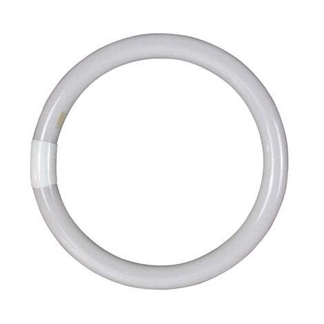 Tubo Circular T9 Tri-phosphor 32w G10q luz fría