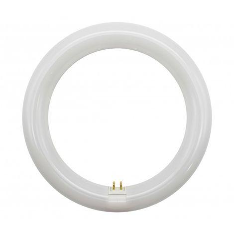 Tubo de LED T9 15W G10Q