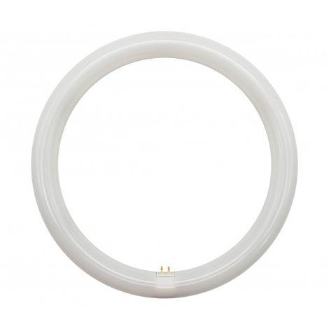 Tubo de LED T9 20W G10Q