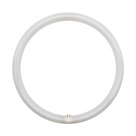Tubo de LED T9 32W G10Q