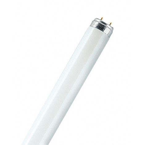 Tubo Fluoresce Lumilux Plus T8 - OSRAM - 26/21-865 - 36 W