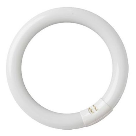 Tubo fluorescente circular 22W T9 6400K GSC 2000589