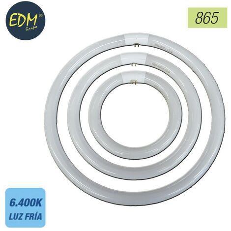 Tubo fluorescente circular 22w trifosforo 865 edm ø 21cm