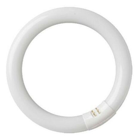 Tubo fluorescente circular 32W T9 6400K GSC 2000590