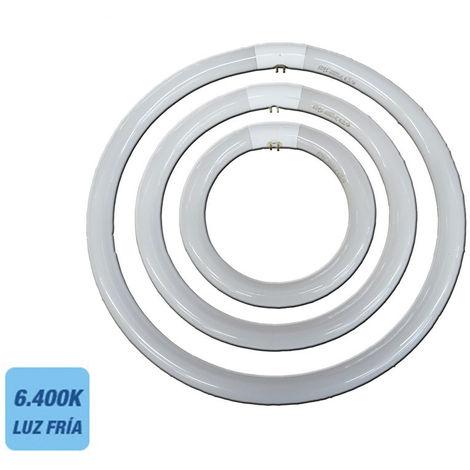 Tubo Fluorescente Circular 40W Trifosforo 865K Ø 40Cm Philips - NEOFERR