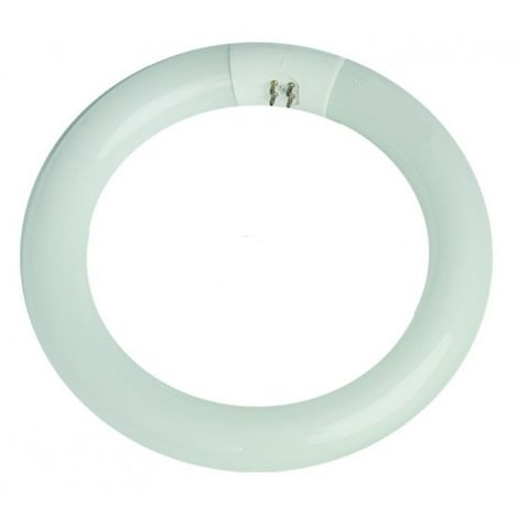 Tubo fluorescente circular económico G10 40W 6400°K 400mm. (F-BRIGHT 2600029)