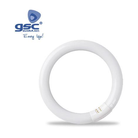 Tubo fluorescente circular T9 32W G10q 6400K