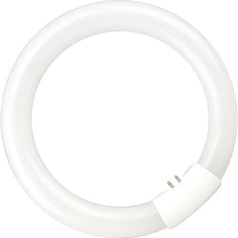 Tubo fluorescente circular T9 G10q