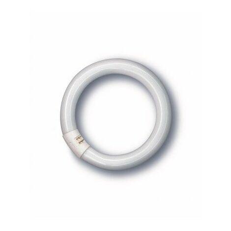 Tubo Fluorescente Circular Trifosforo 32W 6500K Osram