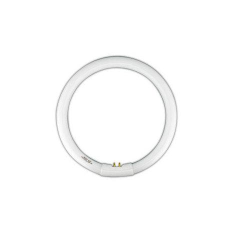 Tubo fluorescente circular Trifósforo T9. 32W-DIA Electro DH 80.359/T9/32/DIA 8430552130924