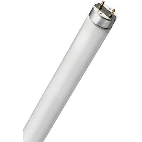 Tubo fluorescente especial insecticida 8W 30cm. (F-Bright 2600499)