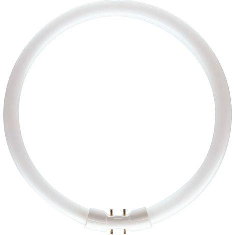 Tubo fluorescente T5 circular 60W 830 PHILIPS 64259225