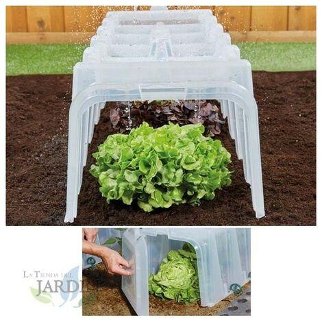 Tunel de cultivo transparente 104x40x30 cm resistente UV